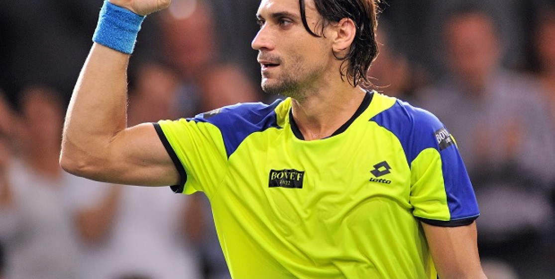 In the library of... David Ferrer